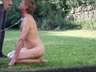 chienne urinoir